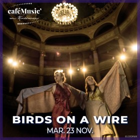 211123 - BIRDS ON A WIRE
