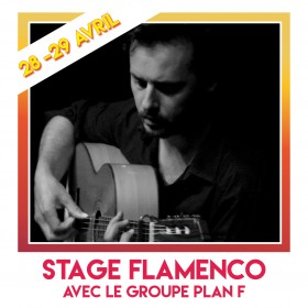 STAGES FLAMENCO PLAN F  carré insta